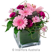 Coffs Flower Deliveries